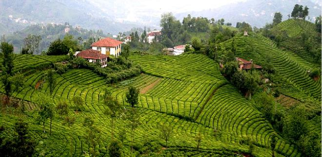 tourism-in-rize-2