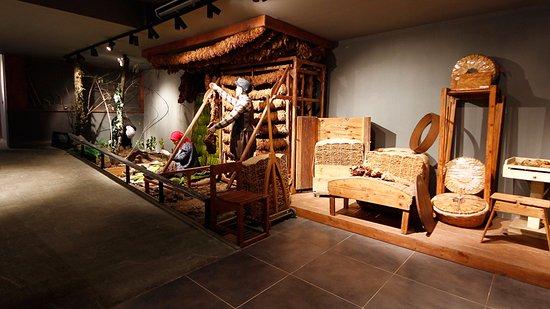 samsun-kent-muzesi